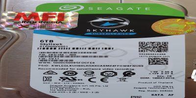 CCTV ANALOG CHINA DENGAN HARDDISK SEAGATE 2 TB